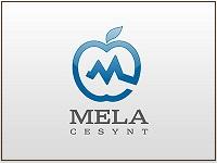 Cover-Mela-Cesynt